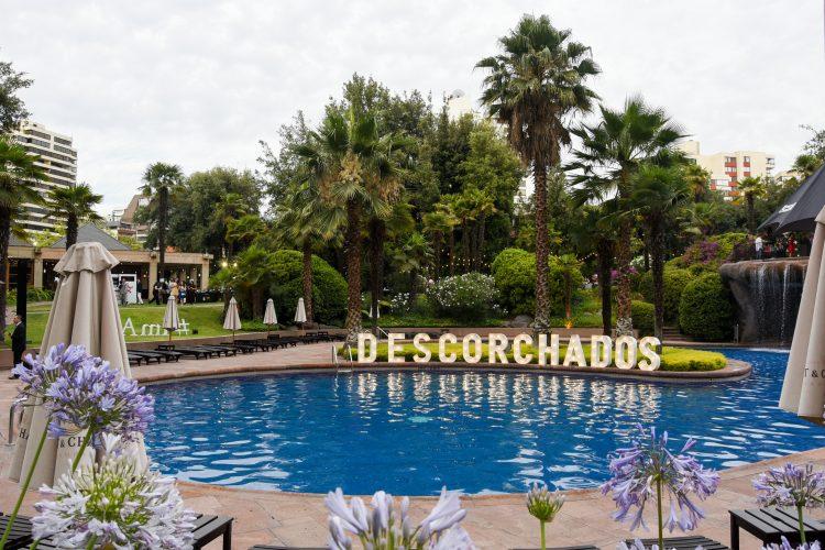 Feria De Vinos Descorchados 2019 Nuevo Video!